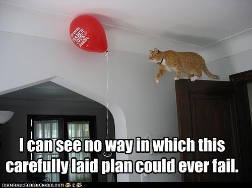 bad idea plotting stupid - 2253757184