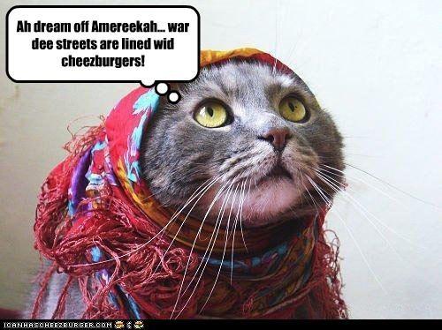 Cheezburger Image 2254590720