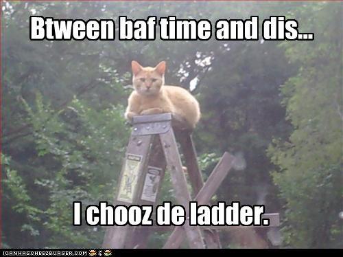 Btween baf time and dis... I chooz de ladder.