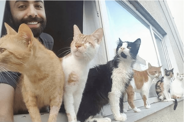 Pianist from Istanbul saves street cats and they are playing music together
