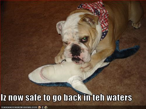 bulldog,jaws,protection,safe,shark,stuffed toy,tough
