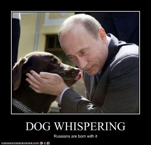 DOG WHISPERING Russians are born with it
