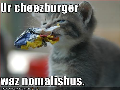 Cheezburger Image 2260912896