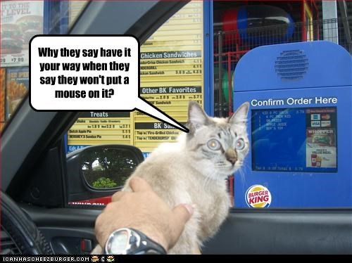 cheezburger drivethru mouse nom nom want - 2261379328