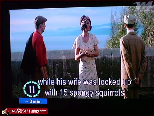 subtitle fail with added squirrels subtitle fail with added squirrels, spongy squirrels!!