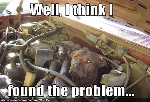 cars engine fix mechanic problem whatbreed