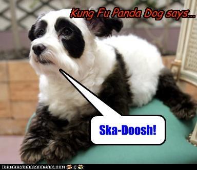 Kung Fu Panda Dog says... Ska-Doosh!
