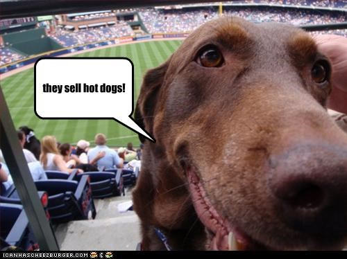 baseball,game,happy,hotdog,stadium,whatbreed