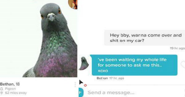 Tinder conversations that perfectly reflect the ridiculous nature of modern day dating.
