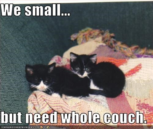 We small...  but need whole couch.