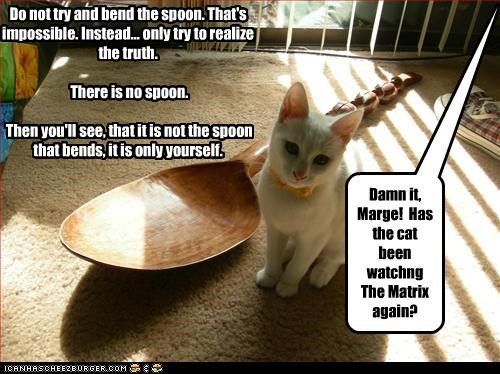 From nao on, u call me Meo...... Do not try and bend the spoon. That's impossible. Instead... only try to realize the truth. There is no spoon. Then you'll see, that it is not the spoon that bends, it is only yourself. Damn it, Marge! Has the cat been watchng The Matrix again?