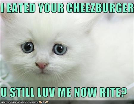 Cheezburger Image 2279994112