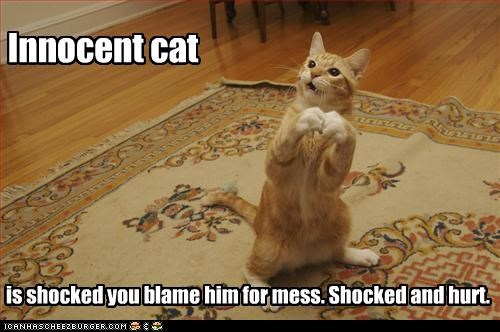 is shocked you blame him for mess. Shocked and hurt.