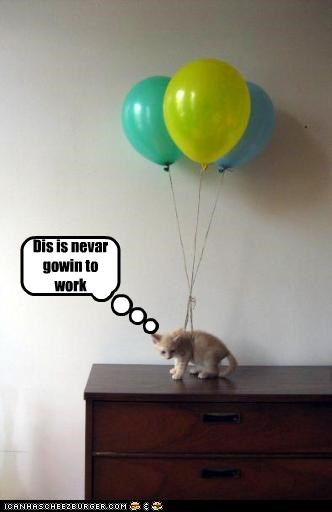 Balloons,cute,kitten,trouble