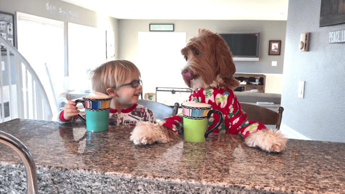 the special morning routine of kid and the family dog