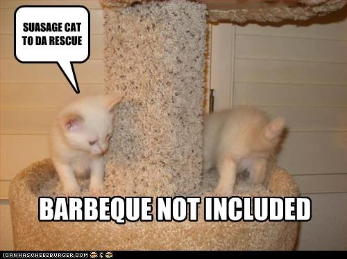 SUASAGE CAT TO DA RESCUE BARBEQUE NOT INCLUDED