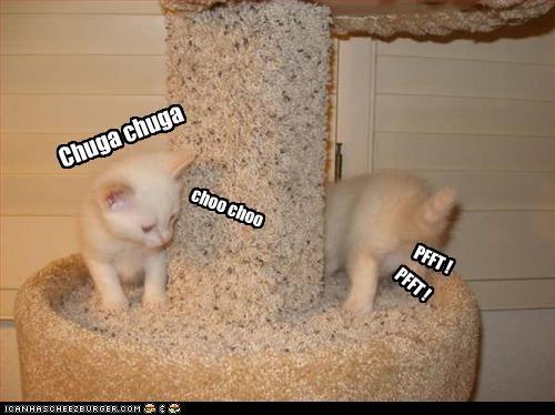 Cheezburger Image 2290026752