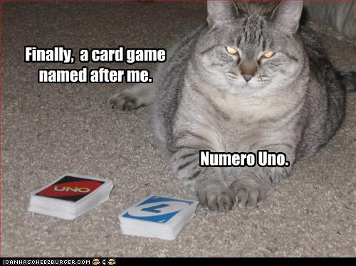cards haughty playing - 2290497792