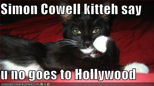 Simon Cowell Kitteh Say U No Goes To Hollywood Cheezburger Funny Memes Funny Pictures
