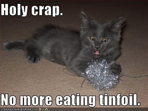 Holy Crap No More Eating Tinfoil Cheezburger Funny Memes