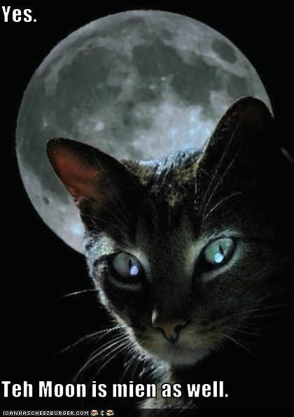 evil moon scary - 2297694464