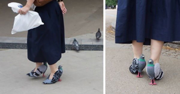 People are freaking out over this Japanese woman's pigeon shoes.