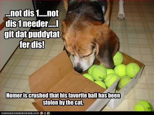 ...not dis 1.....not dis 1 needer.....I git dat puddytat fer dis! Homer is crushed that his favorite ball has been stolen by the cat.