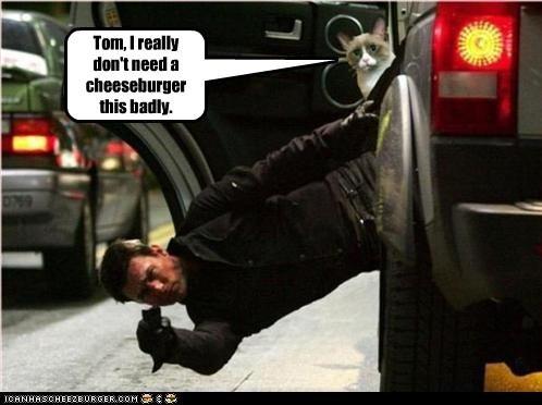 Cheezburger Image 2305532160