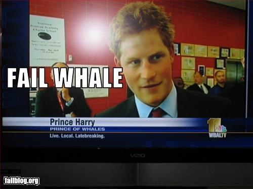g rated harry prince of wales misspelling news TV whale - 2308609792