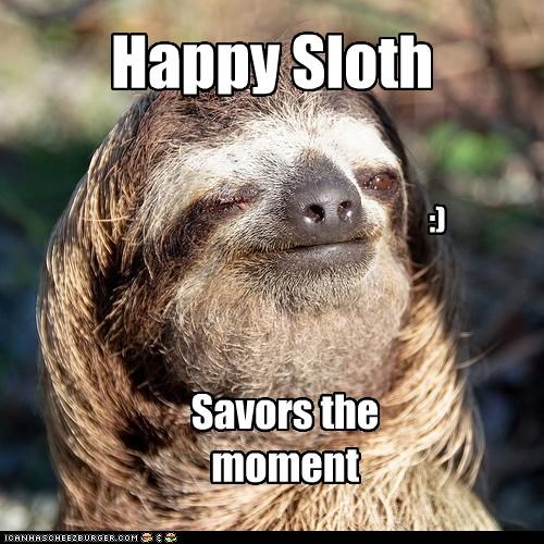 Happy Sloth - Cheezburger - Funny Memes | Funny Pictures