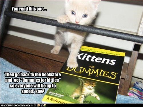 """You read this one... Then go back to the bookstore and get """"Dummies for kitties"""" so everyone will be up to speed, 'kay?"""