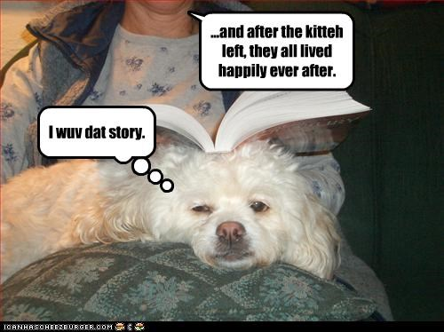 book,fairy tale,gone,kitteh,maltese,mom,reading