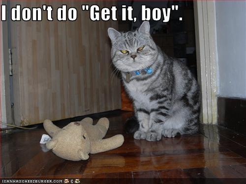 grumpy toy - 2309457152