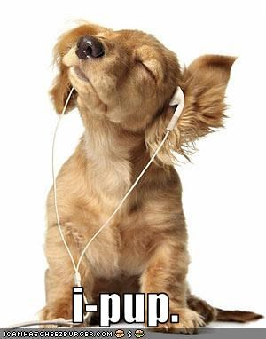 golden retriever headphones ipod Music puppy - 2309488896