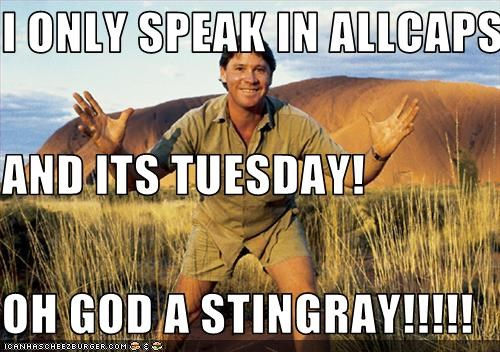 I Only Speak In Allcaps And Its Tuesday Oh God A Stingray