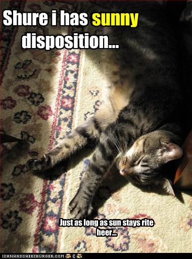 Shure i has sunny disposition... Just as long as sun stays rite heer... sunny
