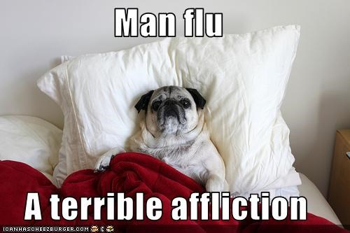 Man Flu A Terrible Affliction Cheezburger Funny Memes Funny Pictures
