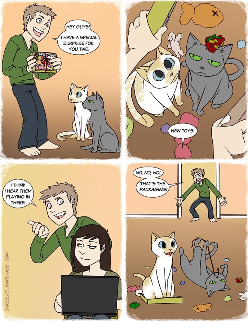 A comic about a cat that wants attention and when its owner gives it to him he leaves - cover photo for a list of new comics by creator A. Stiffler & K for Chaoslife.