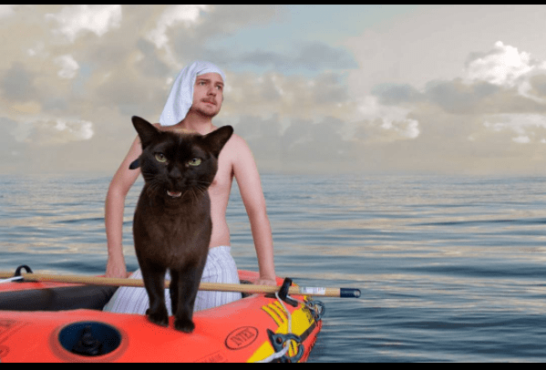 Cats are the stars of famous movie scenes - Black cat as tiger in Life Of Pi