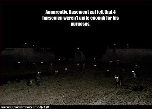 basement cat plotting scary - 2318168832
