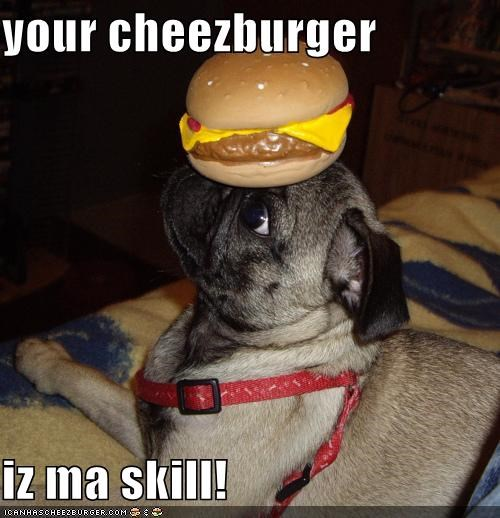 Cheezburger Image 231894784
