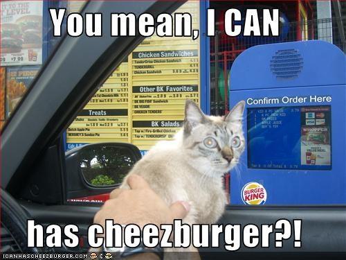 Cheezburger Image 2320283904