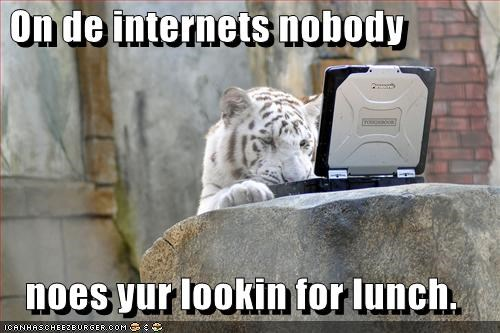 dating,internet,laptop,loltigers,lunch,murder,nom nom nom
