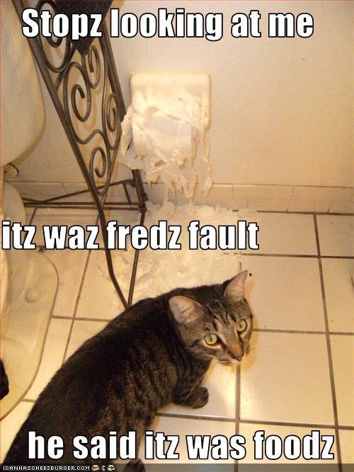 Cheezburger Image 2321346304