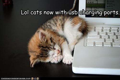 charging cute kitten laptop USB - 2324494080