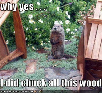lolwoodchucks wood - 2326735616