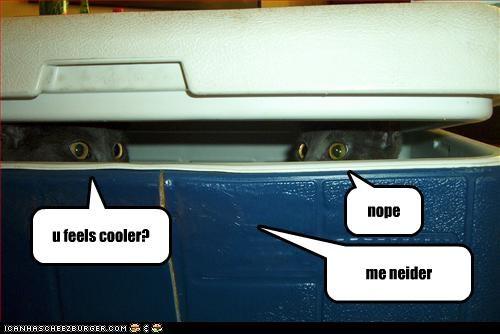 cooler,hiding