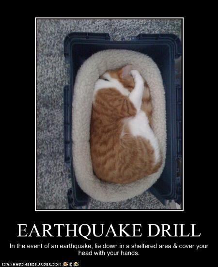 EARTHQUAKE DRILL In the event of an earthquake, lie down in a sheltered area & cover your head with your hands.