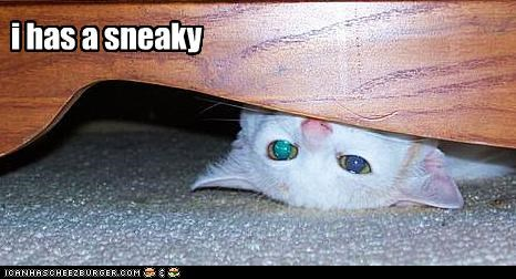 i has a sneaky