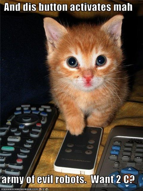 army cute evil kitten murder - 2339442944